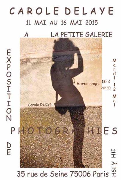 Exhibition Carole Delaye, Petite galerie Art Gallery, Paris 2015